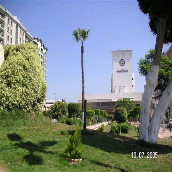 Mansoura,Governorate Building